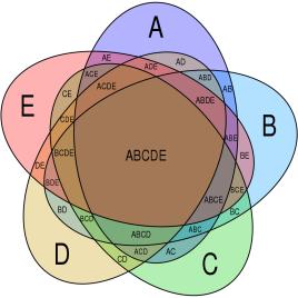 Symmetrical_5-set_Venn_diagram.svg